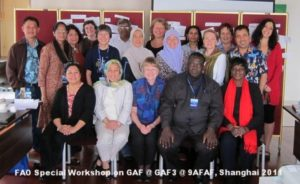 2011 FAO Special Workshop on GAF @ GAF3 @ 9AFAF Shanghai