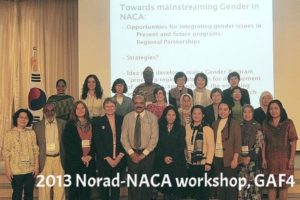 2013 GAF3 NACA-Norad workshop @ 10AFAF Yeosu